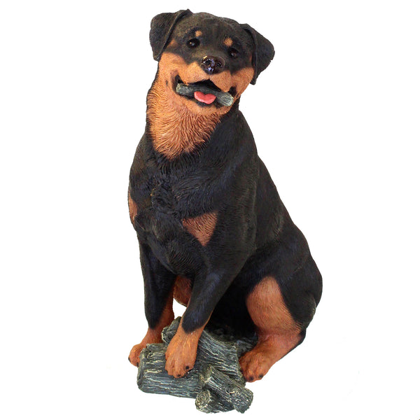 "Large Rottweiler Figurine ""Biting a Stick"" 9.25 in. Adult Sitting 12C - Rottweiler POV"