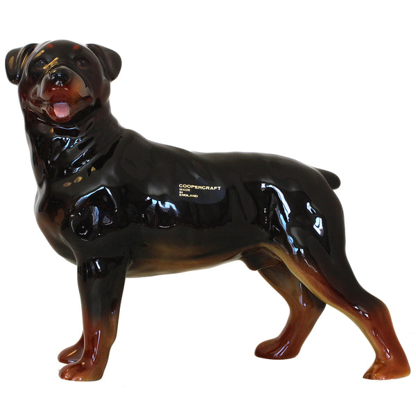 "Large Rottweiler Figurine ""Surprised Champion"" 8 in. Adult Standing 12E - Rottweiler POV"