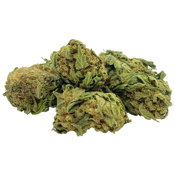 Orange Diesel CBD [Outdoor] - French Hempire CBD - cbd, chanvre, fleurs, greenhouse fleurs cbd france cannabis légal livraison boutique toulouse paris marseille