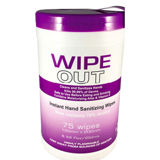 Wipe Out Disinfecting Wipes (75 count)