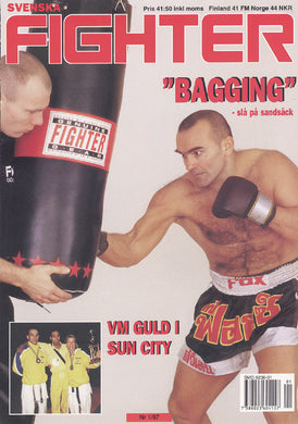 Boxsack Fighter