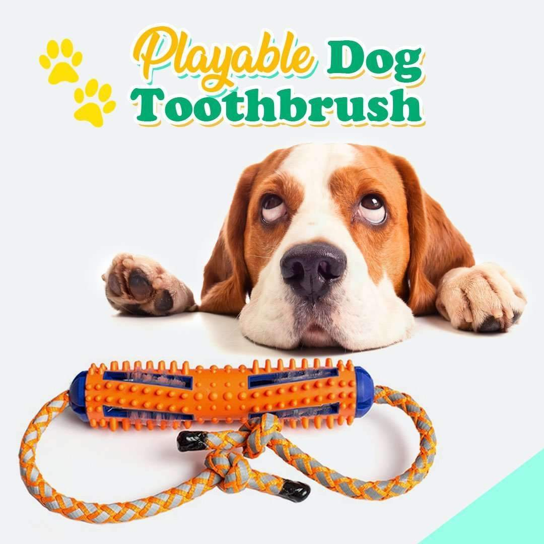 Playable Dog Toothbrush