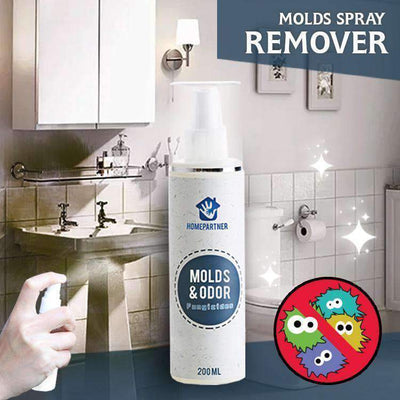 Root Out Mold Remover Spray