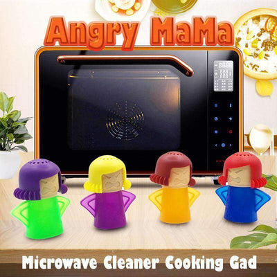 Microwave Steam Cleaner