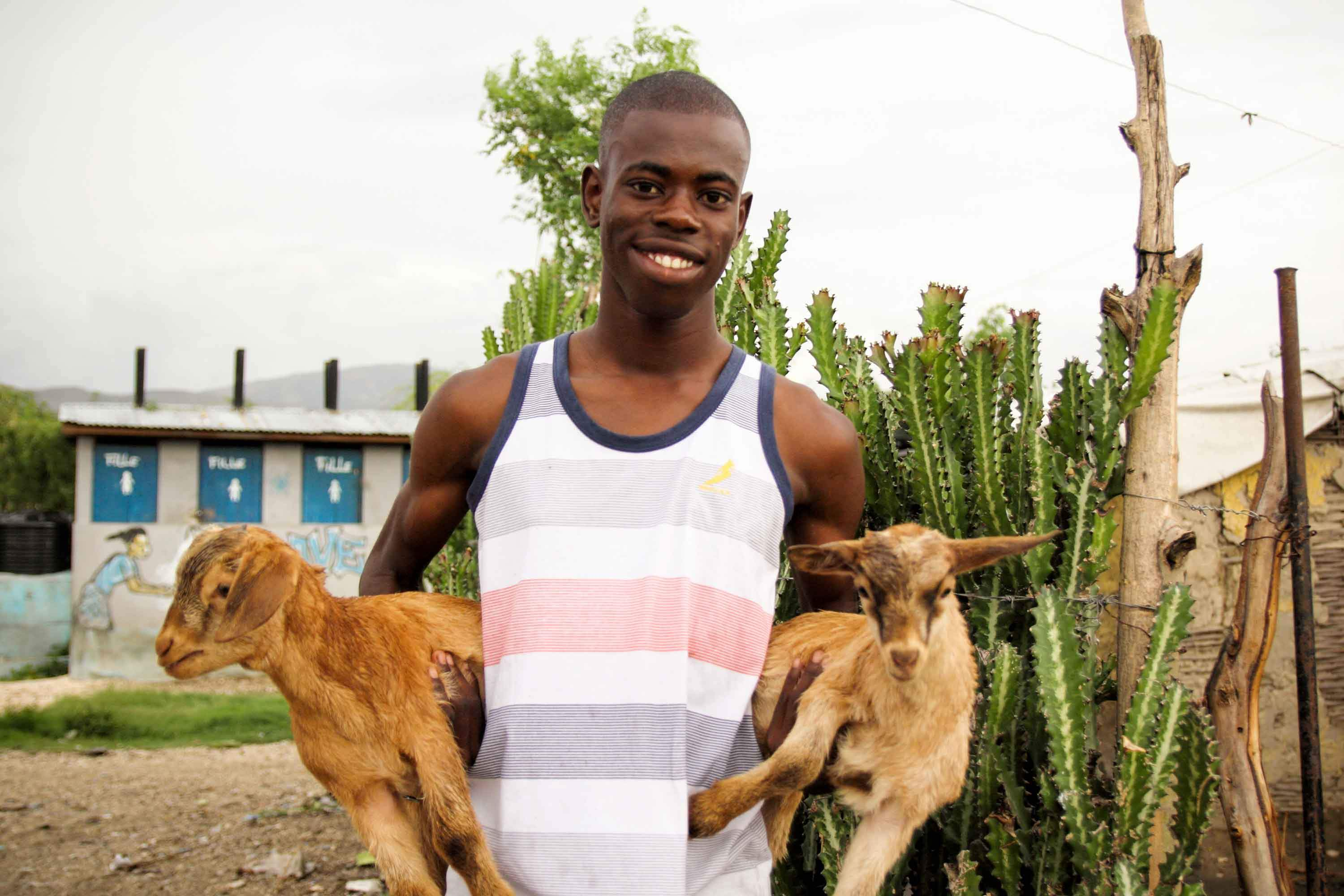 Haitian youth and his goats