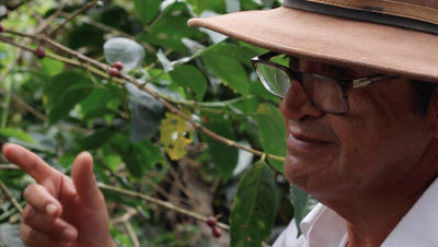 Coffee Relationships, In Good Times and Bad, with Ecuador Finca Maputo