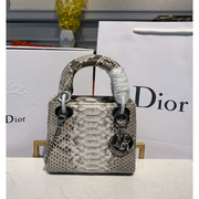 MINI LADY DIOR BAG