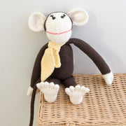 Momo the monkey - THE BENJAMIN ORGANIZATION