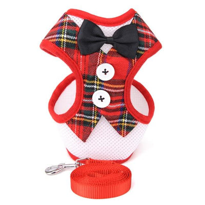 HARNESS VEST & LEASH - Checkers / S - Pet harnesses