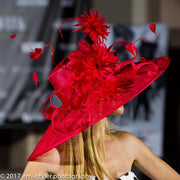 TOULOUSE - Feathers and Loop Embellished Sinamay Hat