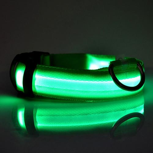 Safety Led Dog Collar Battery Operated - Green Button