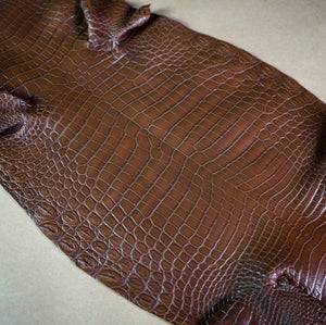 Alligator / Crocodile Skins