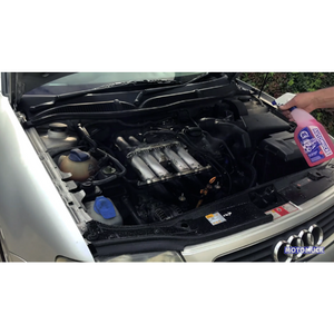 Auto Cleaner 5 litre with Squirter ProMax