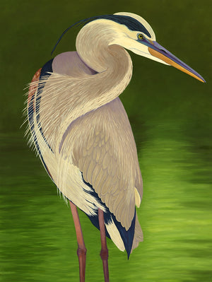 Moon-Light-Great-Blue-Heron-Original-Oil