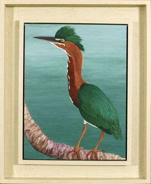 Original Oil Painting of a male Green Heron framed