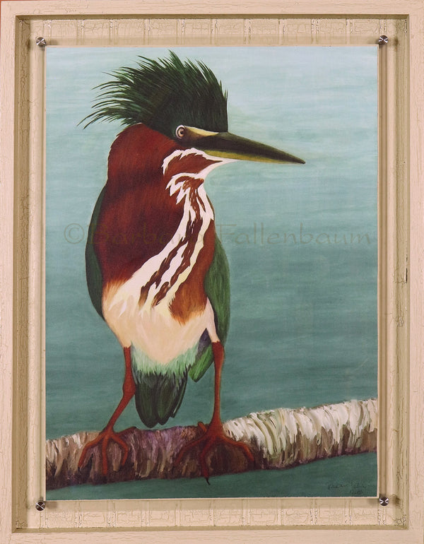 Hand Embellished Giclee in Stand Off mount frame of Green Heron Parent - Mother