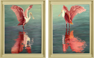 Original Oil Painting of a pair of Roseate Spoonbills during part of their mating ritual - framed