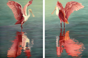 Original Oil Painting of a pair of Roseate Spoonbills during part of their mating ritual