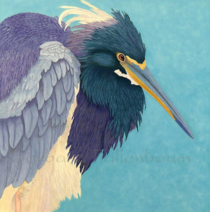 TriColored Heron Portrait - Original Oil Original Oils Barbara Fallenbaum