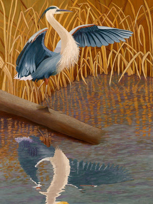 Wetlands Great Blue Heron - Original Oil Original Oils Barbara Fallenbaum