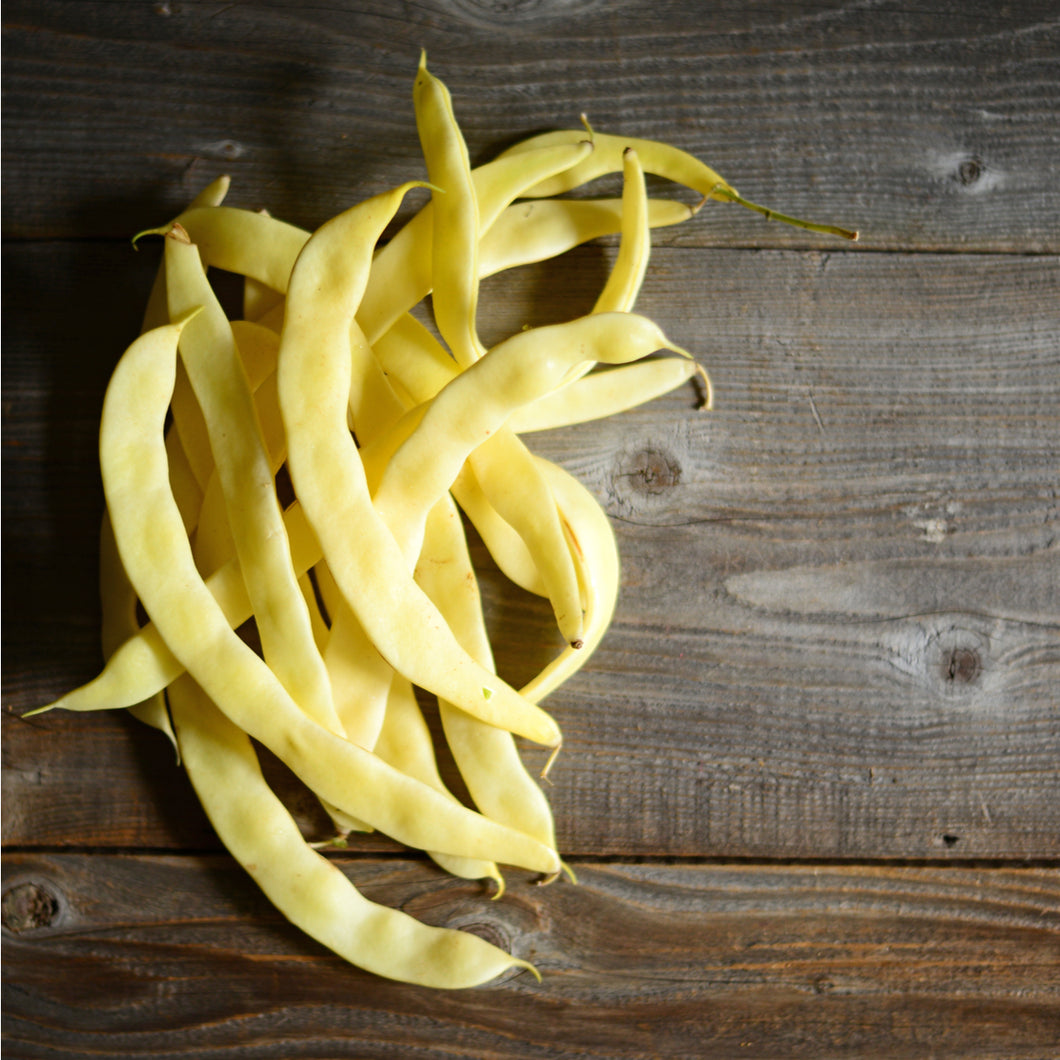 Seeds - Yellow Bean - Flat Short Bean