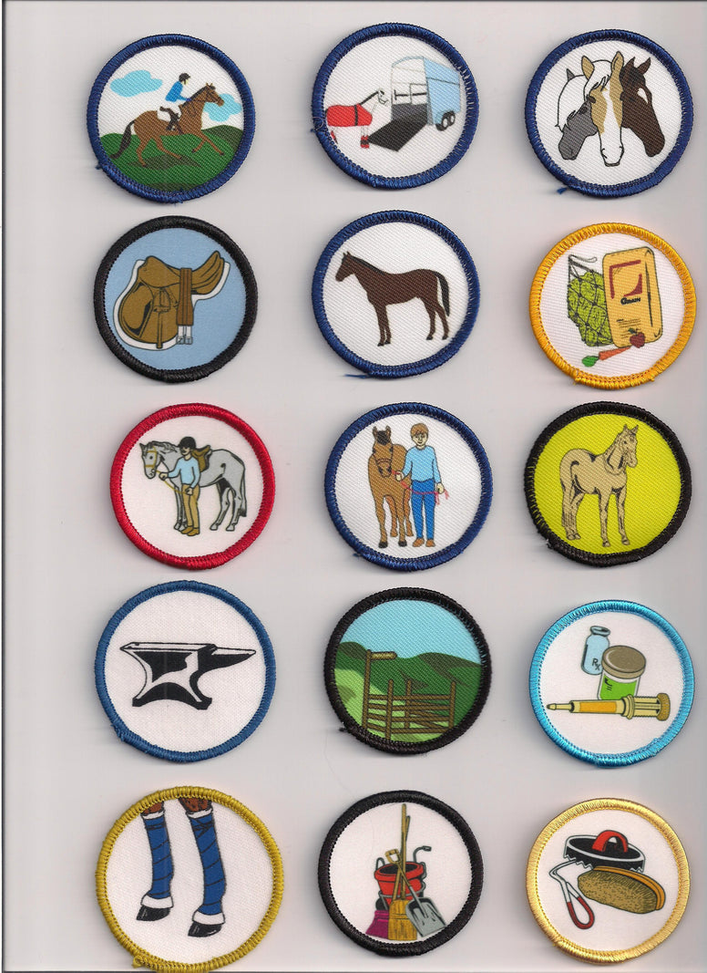 Badge - Set of 15 Horse Management