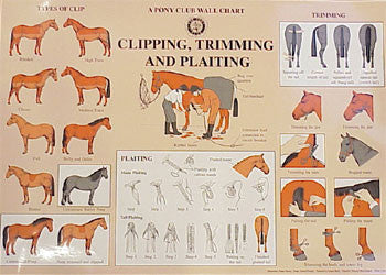 Chart - Clipping, Trimming, and Plaiting