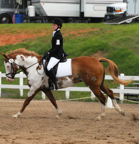 Beginner Novice Dressage Test