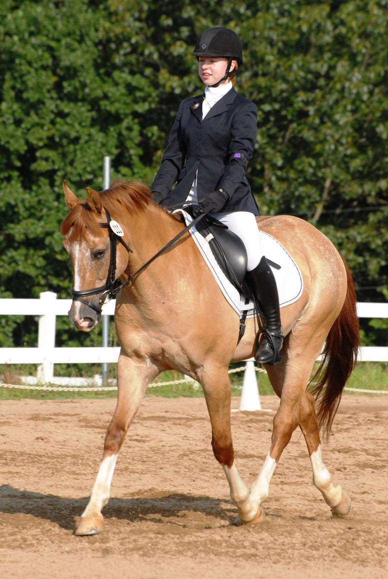 USEA Dressage Test Packet