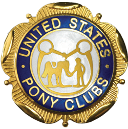 USPC Member Pin Stickers