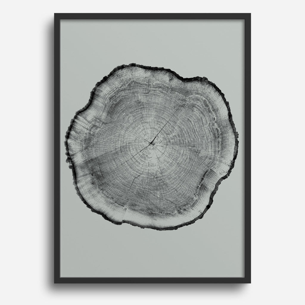 Rings #2 - Decor Haus Store Wall Art and Limited Edition Prints