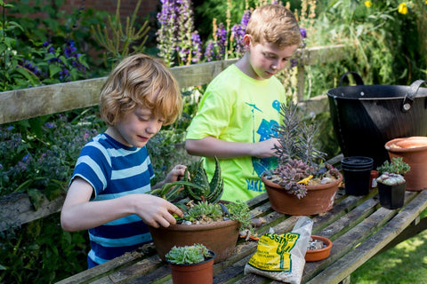 Grow a Container Garden fun family activities at home