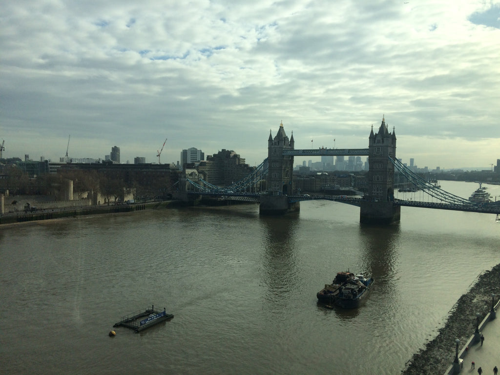 A day in the life of a bike share user