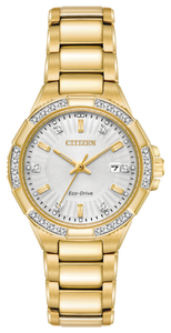 Citizen Eco-Drive EW2462-51A