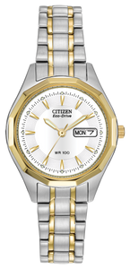Citizen Eco-Drive EW3144-51A
