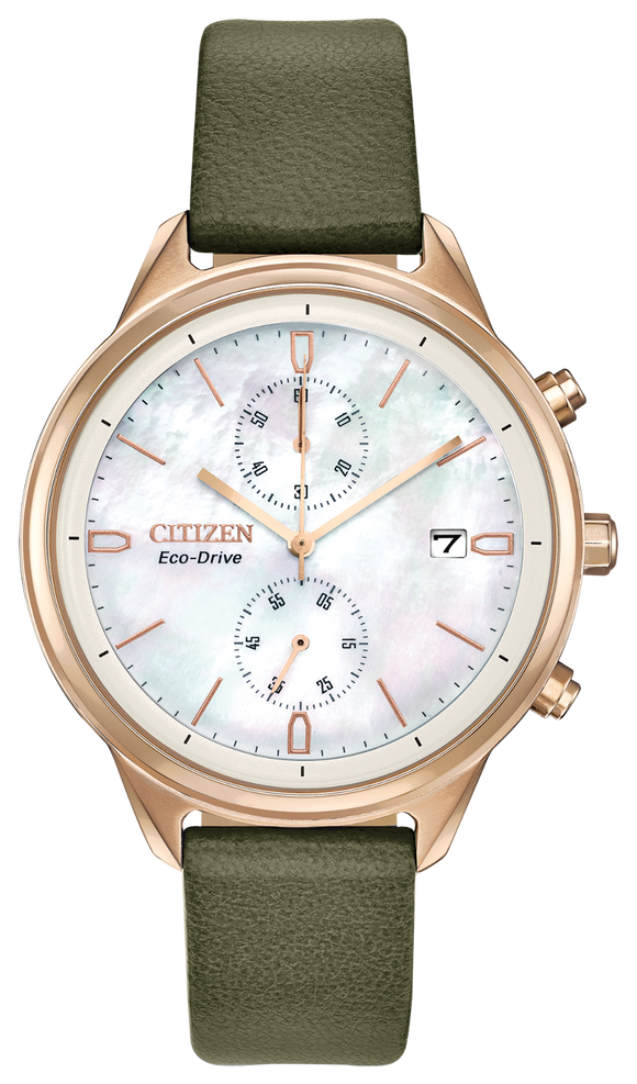 Citizen Eco-Drive FB2008-01D