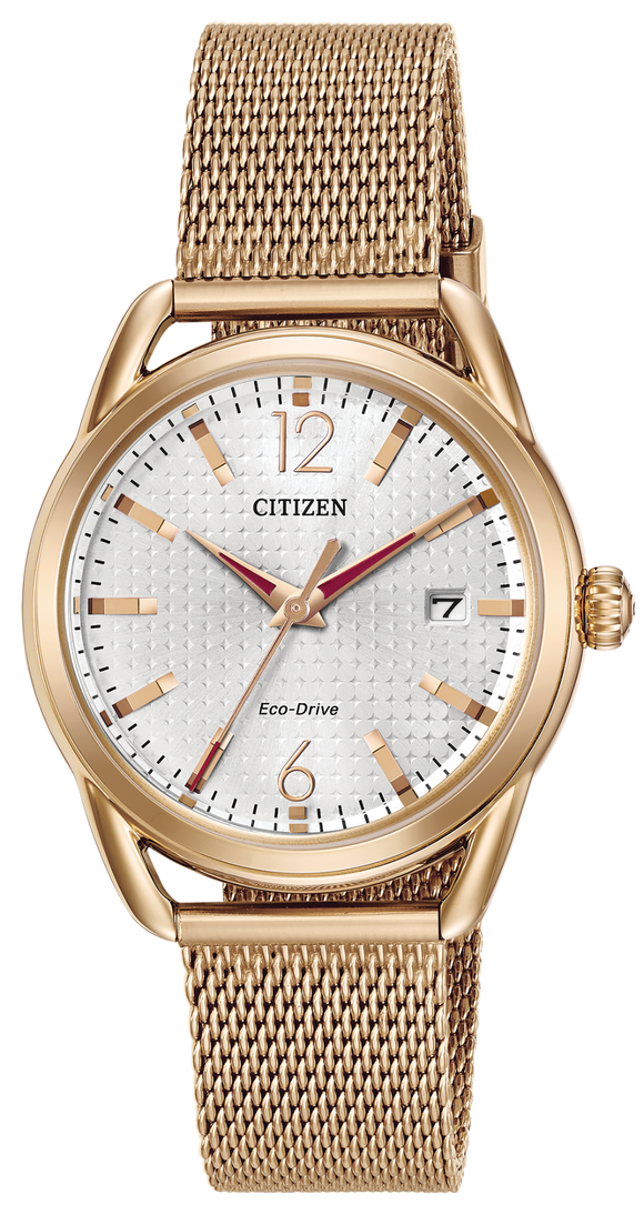 Citizen Drive FE6083-72A