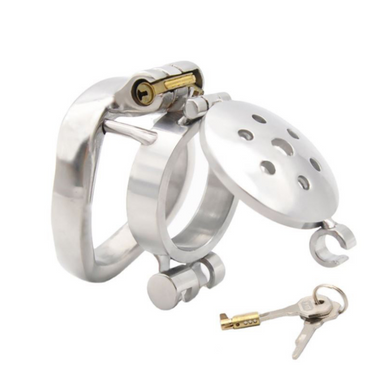 Metal Male Chastity Cage With Dual Locks
