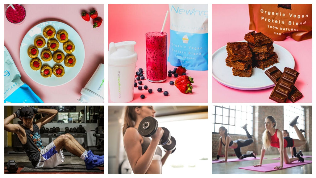 plant based protein powder supplements