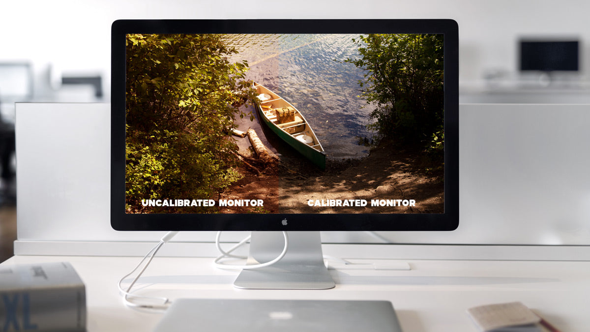 Everything You Need to Know on Monitor Calibration