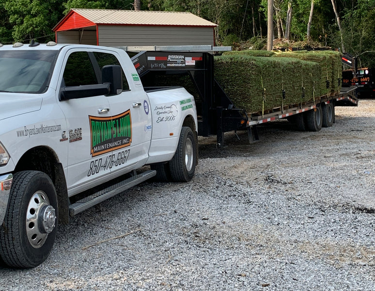 Buy sod grass by the roll or pallet