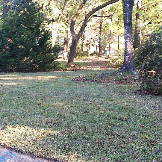 Sod and Driveway installation