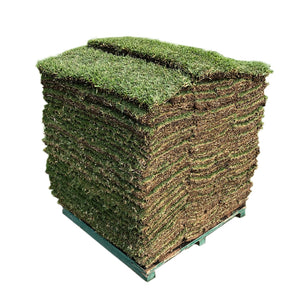 Sod by the Pallet