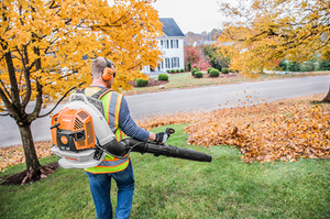 Rental: Stihl Backpack Blower BR 800 X MAGNUM