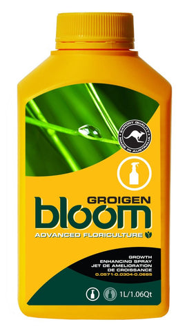 Bloom - Groigen - NPK Technology Hydroponics
