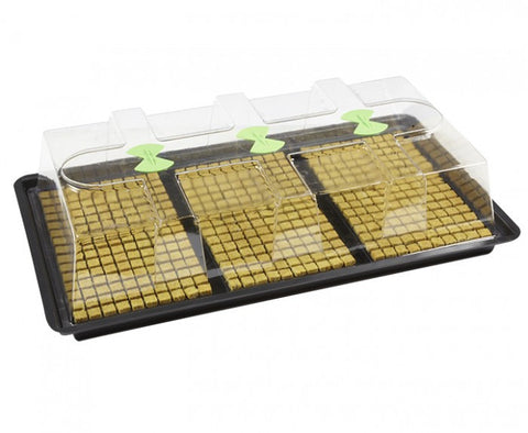 X-Stream - Basic Propagator, Heated & Unheated.