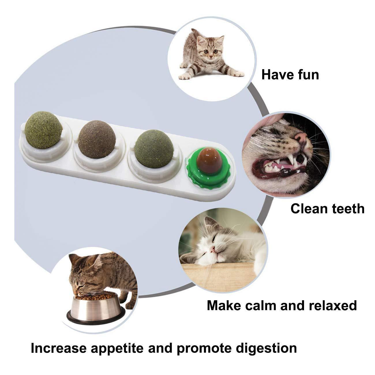 ✨Rotatable Catnip Ball Set✨