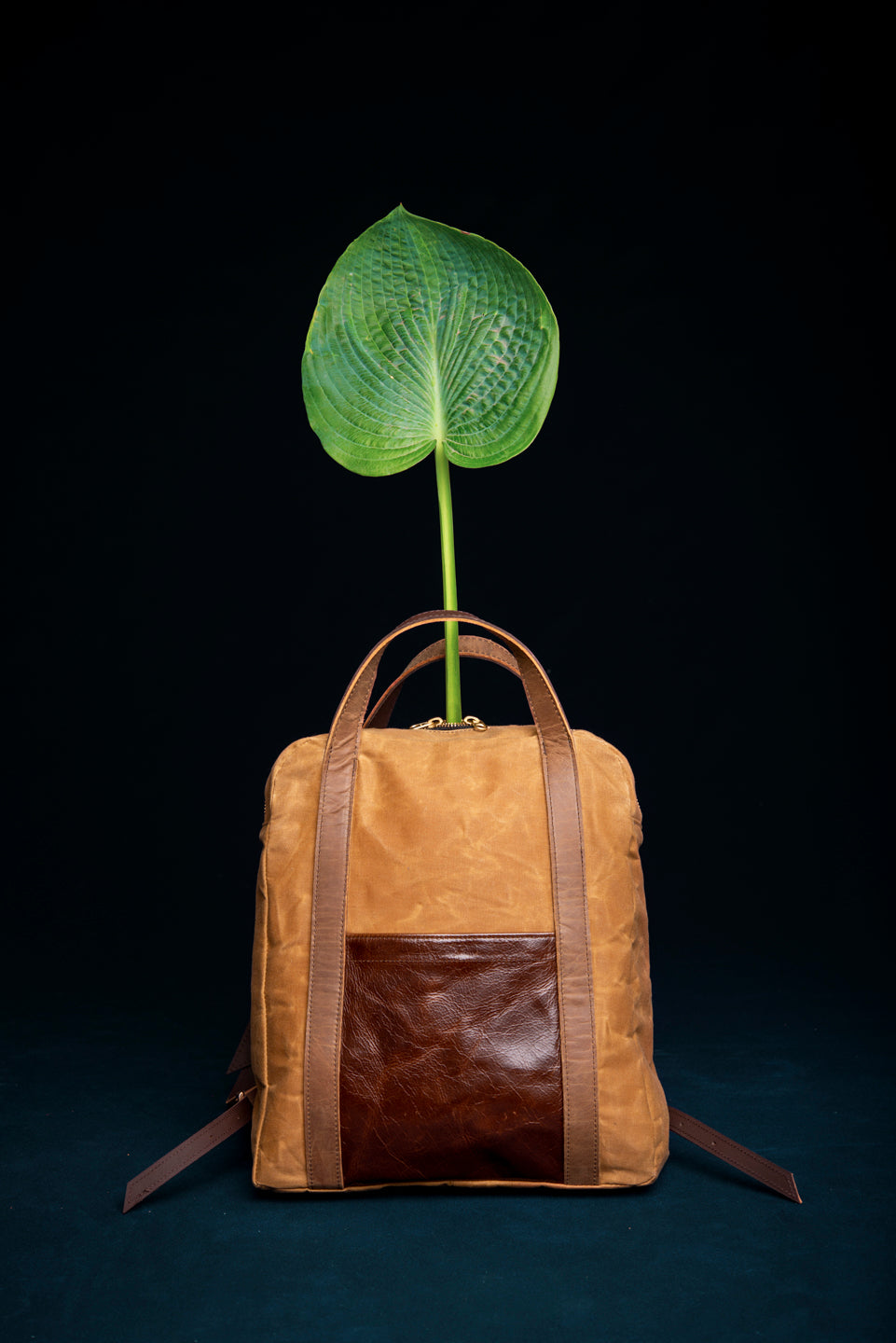 Leather and waxed canvas back pack - Gilford