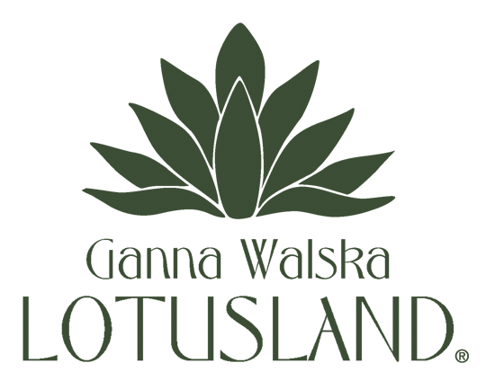 lotuslandshop.org