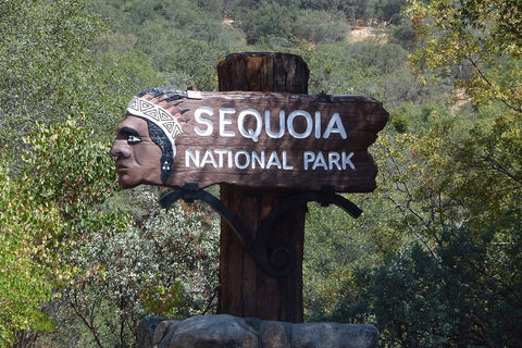 Sequoyah national park amerika